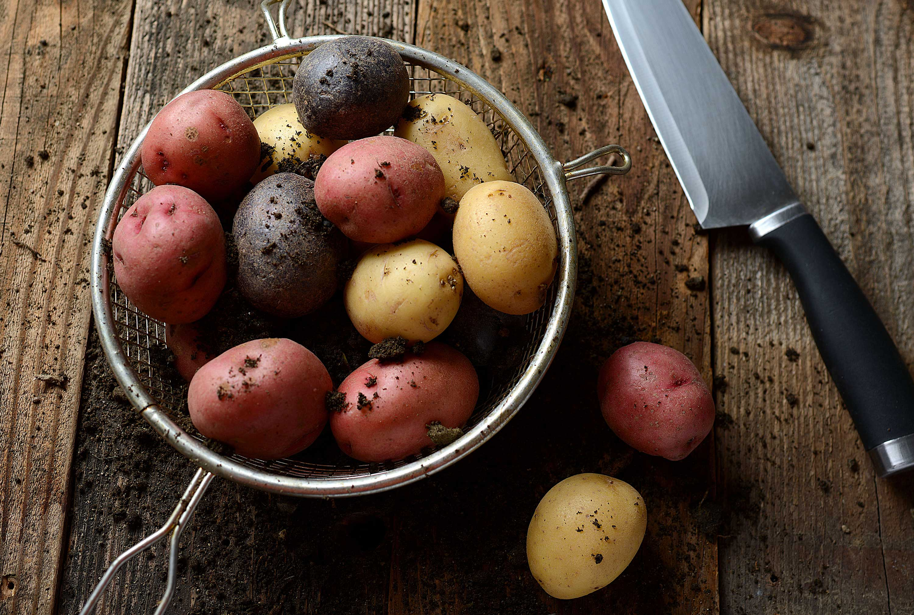 mike wepplo natural photography red purple and yellow potatoes