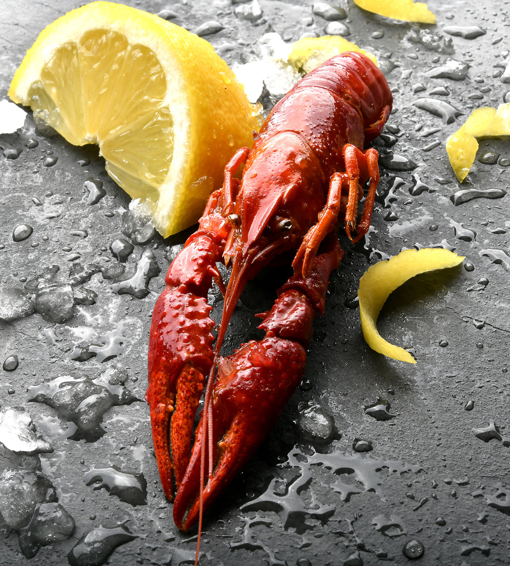 mike wepplo natural photography lobster with lemon wedge